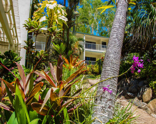 1200-1bed-gardenview-palm-cove11