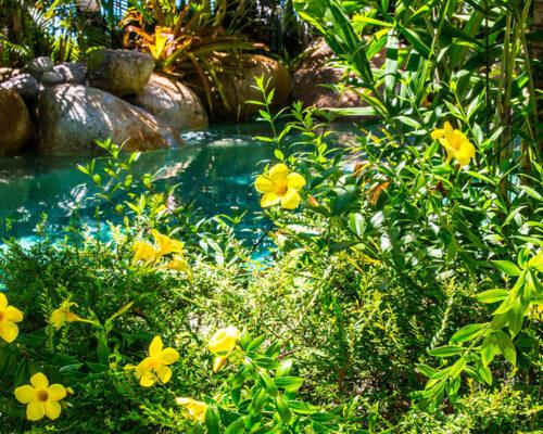 1200-facilities-location-melaleuca-resort-palm-cove5